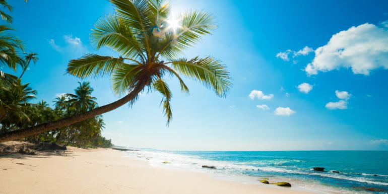 sri lanka palm tree beach cruise pricing