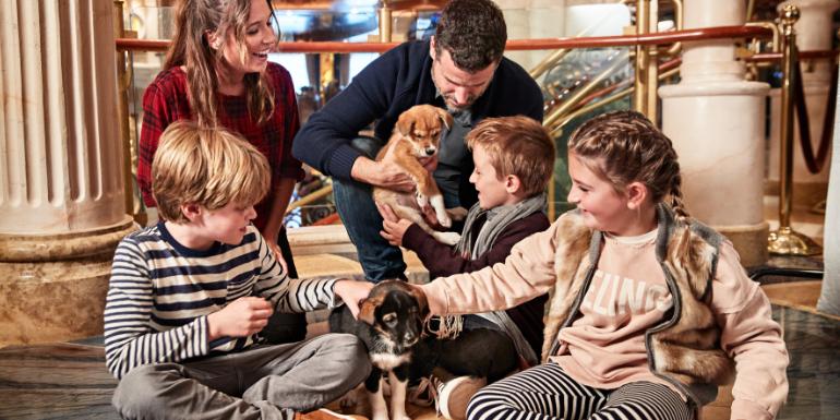 puppies piazza animals princess cruises kids