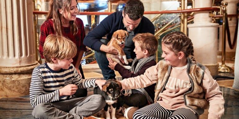puppies piazza animals princess cruises kids
