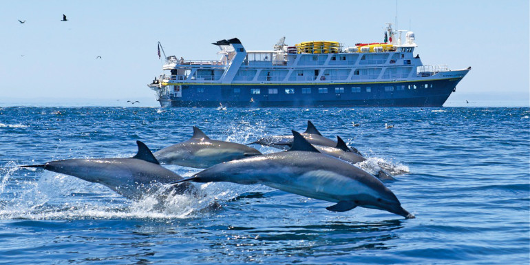 lindblad national geographic expedition cruise expensive