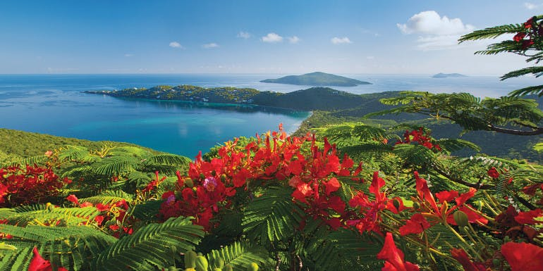 eastern caribbean st thomas cruise month