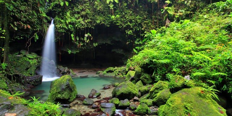emerald pool morne trois dominica