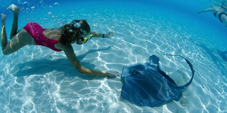 grand cayman snorkeling stingray city caribbean