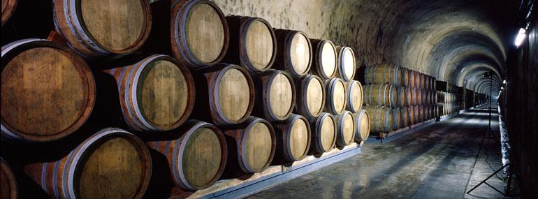Which island has the world's oldest rum distillery?