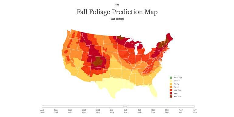 fall foliage leaves map cruise