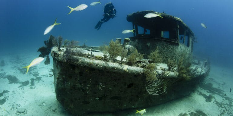 freeport grand bahama scuba shipwreck