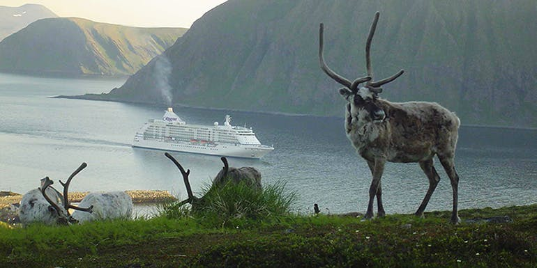 batlic best time to book cruise