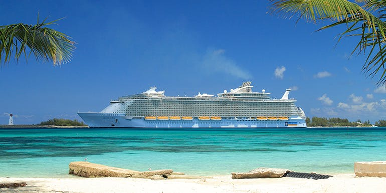 royal caribbean choose best cruise line